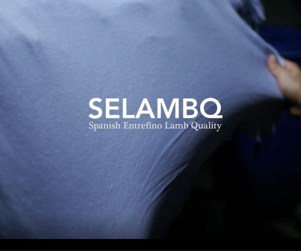 Los curtidores europeos de pieles de cordero español Entrefino completan un importante hito en su iniciativa de mejora de la calidad, informa Cotance